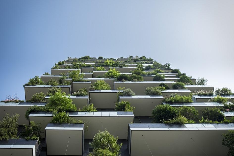 épület zöld növények épület