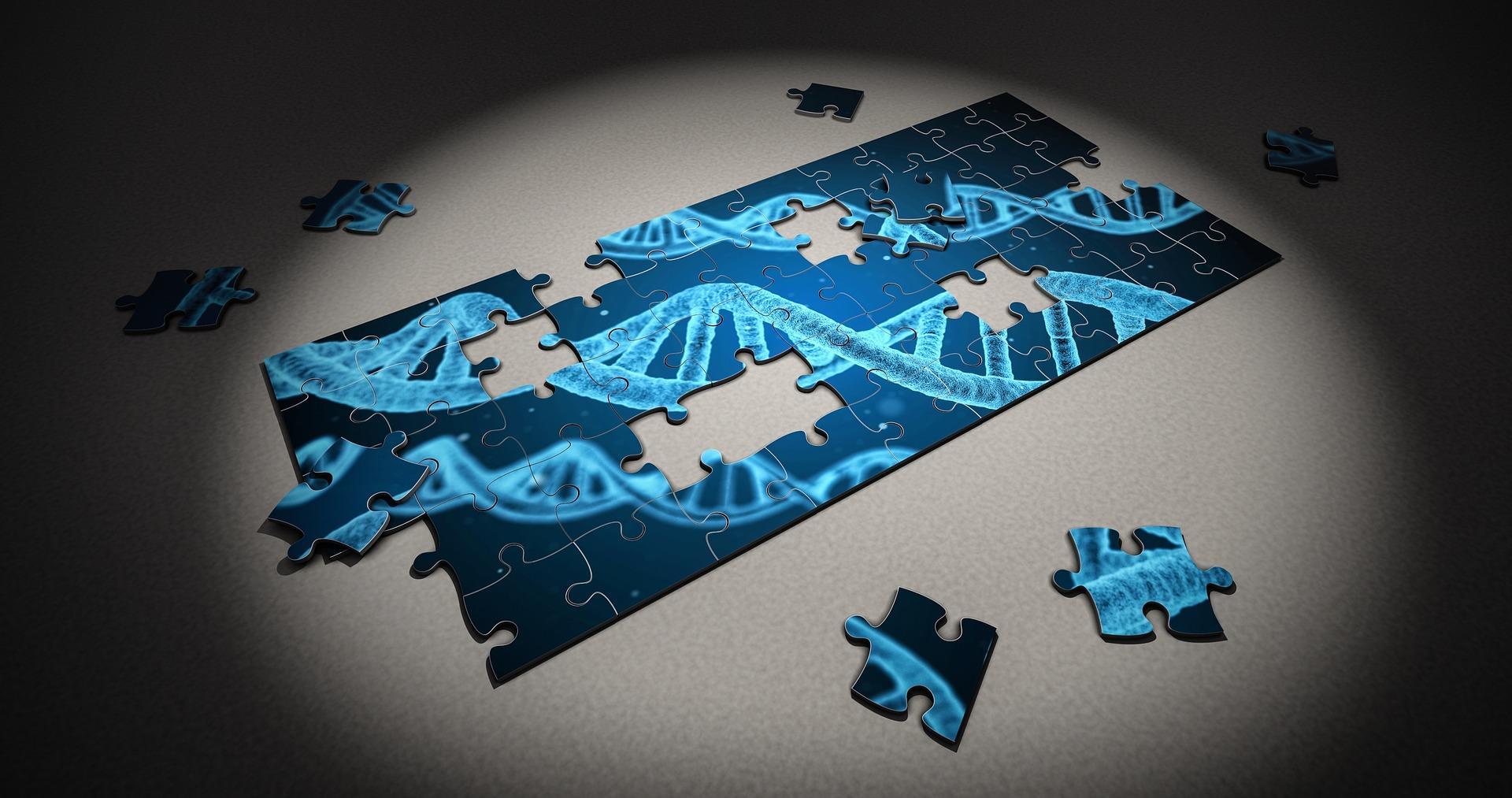 genetika, megőrzés, hiányos