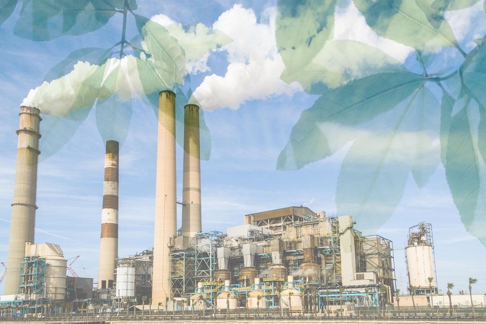 hamis zöld, gyár, hamis kommunikáció, ködösítés