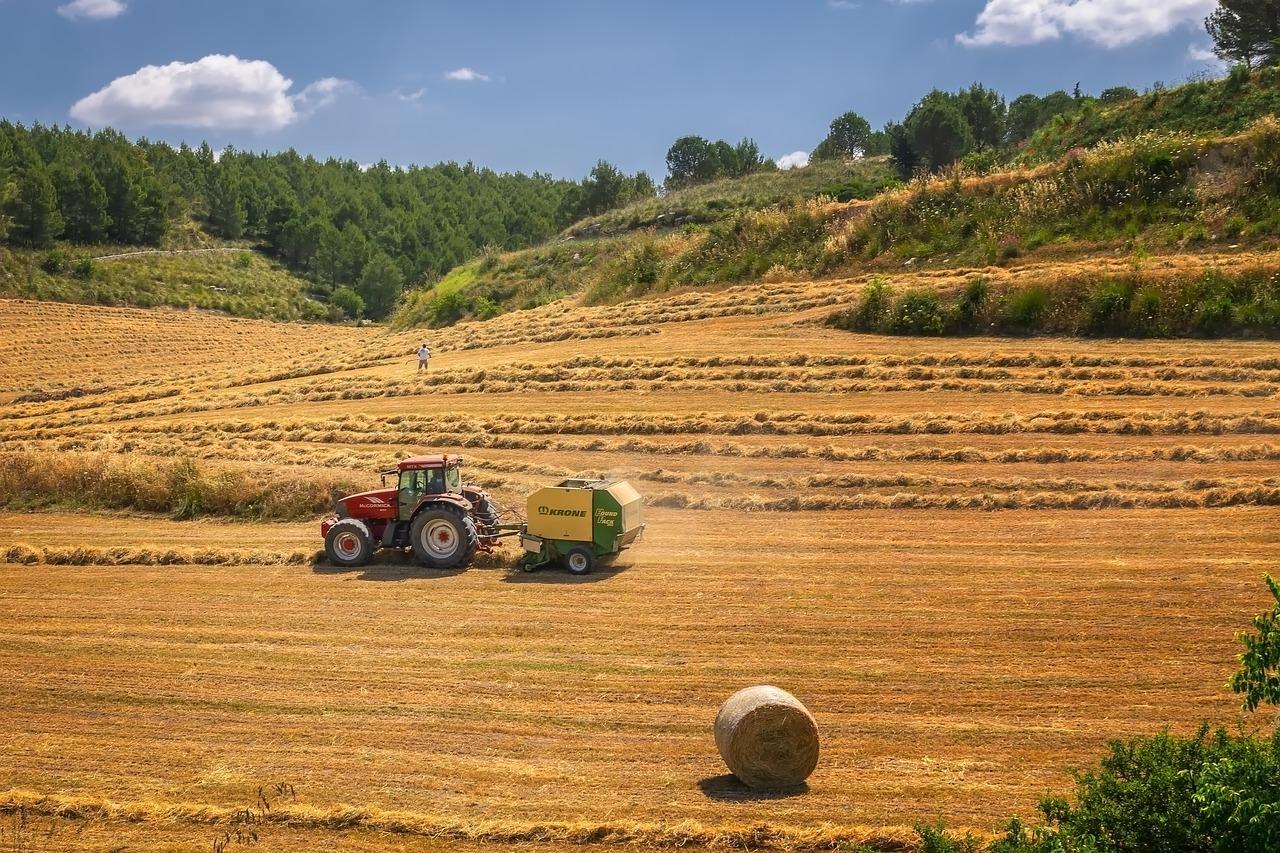 mező, szántás, mezőgazdasági gép