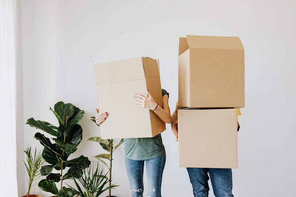 lakás, fiatal pár, kartondoboz, költözés